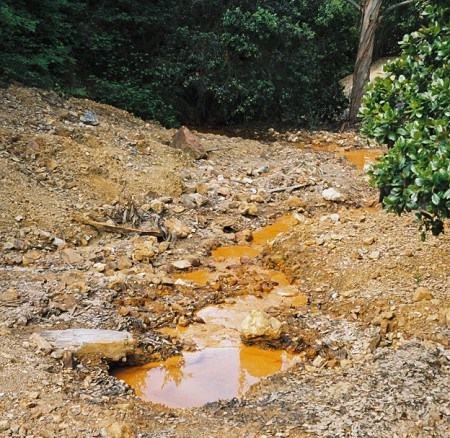 Groundwater seep with characteristic orange color associated with acid mine drainage.